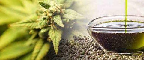Essentia Pura – Providing You All of Your CBD Needs