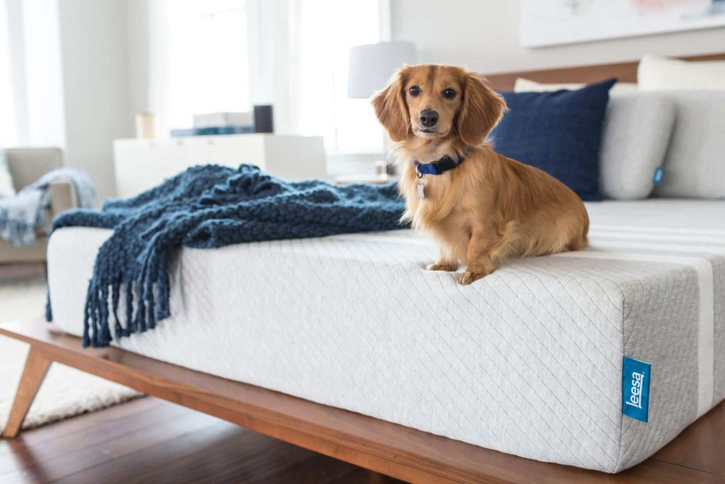Here's Why You Should Opt For A Single Size Bed – READ HERE